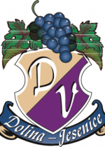 Logo_brez_barvni